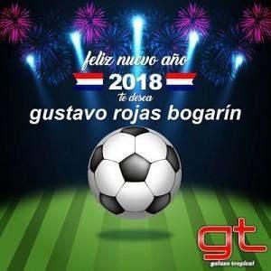 GT2018_opt